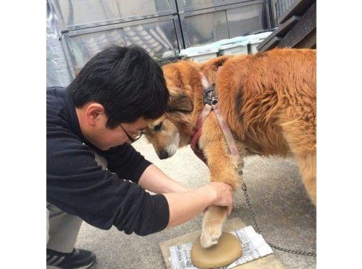 【兵庫・姫路】時間がない方にオススメ!手形プレート作り体験