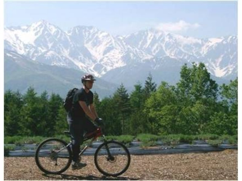 【長野・信濃】春花三昧!レンタルサイクルで北アルプス山麓信濃大町をゆっくりサイクリングの紹介画像