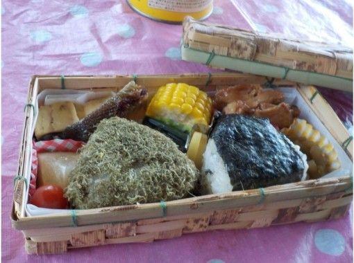 【富山・立山山麓】セラピーガイドがご案内!森林セラピー(リフレッシュコース)特製セラピー弁当付き