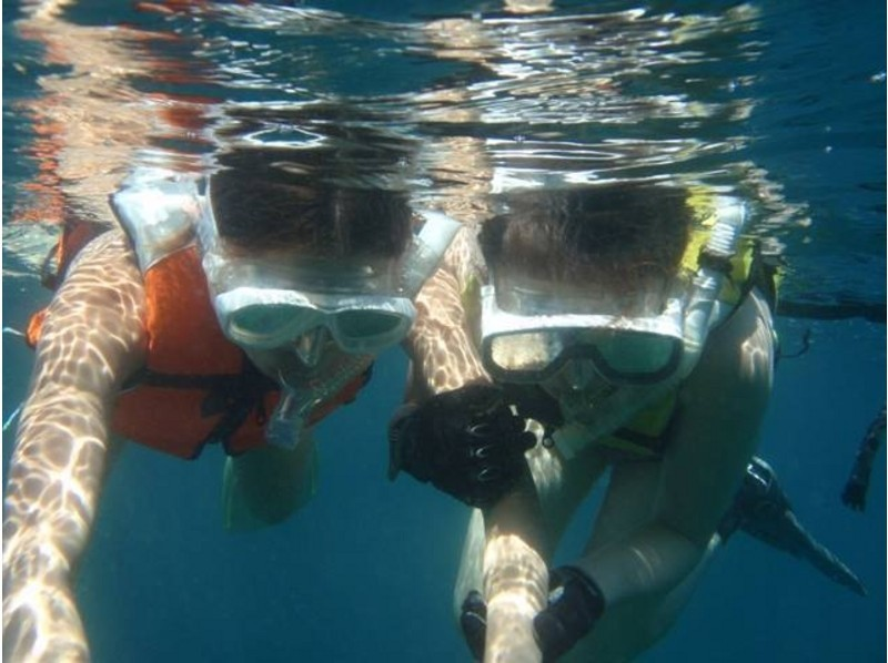 [Izu Oshima, for beginners! ] Introduction image of experience snorkeling (2 hours)