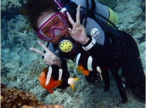 ☆海を満喫セットプラン☆青の洞窟シュノーケリング&クマノミ体験ダイビング 魚の餌付け&写真撮影付きの紹介画像