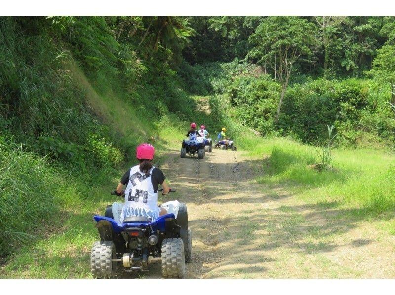 [沖繩縣名護]運行舒適林巴爾燕四輪馬車!走的時候也有[乘坐馬車遊覽的形象介紹