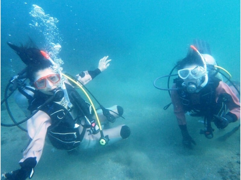 [Kanagawa, Miura Peninsula] Beginners welcome! Jogashima Island experience diving introductory image that can also BBQ