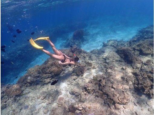 コロナ対策万全!お店1組で貸切【沖縄北部本部】スタンドアップパドル+(スキンダイビング・シュノーケリング)で美しいサンゴ礁の海を満喫♪【