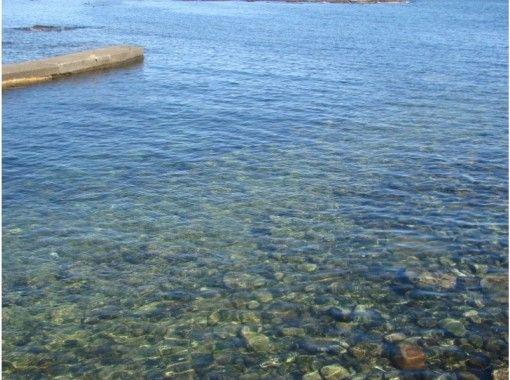 【静岡・下田・恵比須島】屈指可數超高透明度的下田浮潛體驗の紹介画像