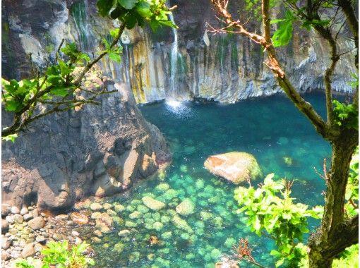 "[Hokkaido, Shiretoko] Walk the beast road and experience the world of animals !! ""Shiretoko one-day nature guided tour around the five lakes of Shiretoko and the primeval forest""の紹介画像"