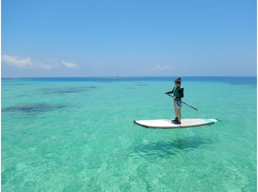 Sale continues in September and October! [Churaumi Aquarium / Nakijin Village / Hidden Beach] 1 group reserved! SUP cruising & snorkeling! Photo / drink serviceの紹介画像
