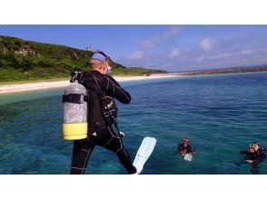 宮古島ダイビング アクアテックアドベンチャーの画像