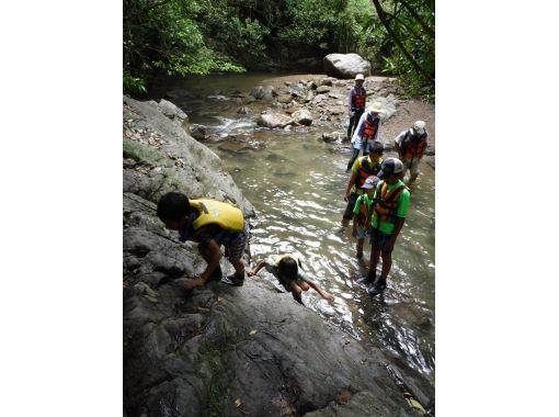 【沖縄県・国頭郡大宜味村】4歳のお子様からOK!川をさかのぼる初級トレッキングツアー