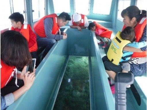 【沖縄・備瀬】小さなお子様も楽しめる♪ファミリーにおススメのグラスボート!