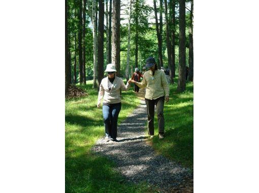 【北海道・富良野】豊かな森を再生し、地球を五感で感じる「環境教育プログラム」苗木を植える!