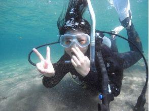 TAMTAM Diving School(タムタムダイビングスクール)の画像