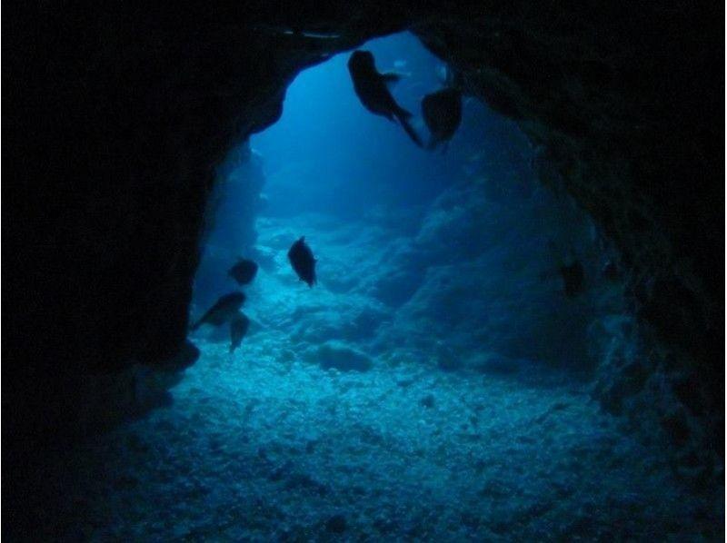 【沖縄・恩納村】体験ダイビング(青の洞窟コース)の紹介画像