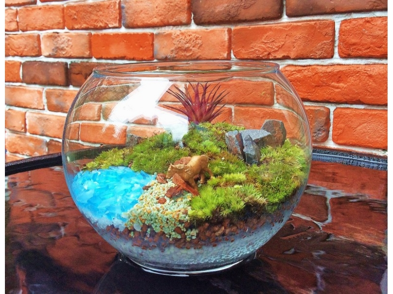 Terrarium (cute glass balls) creative experience ♪ Introduction image