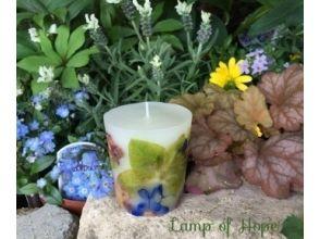 Lamp of Hope(ランプオブホープ)の画像