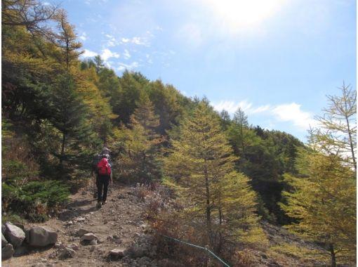 [Nagano/ Komoro] Watch the magnificent view of Mount Asama! Black spot mountain trekkingの紹介画像
