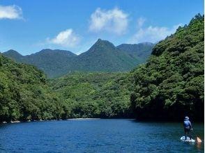 屋久島ガイド島あそびの画像