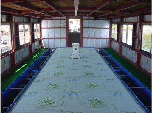 【長野・野尻湖】わかさぎ釣り体験~ドーム船だから寒くない!レンタルセット&天ぷら付き(3時間)
