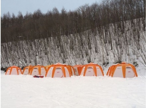 [Hokkaido Tokachi] Smelt Smelt fishing experience on the ice of Lake Sahoro! Safe for the first time with pick-up & guide!の紹介画像