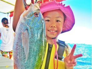 GOGOフリッパーズ石垣島の画像