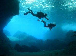 ダイビングサービス碧海の画像