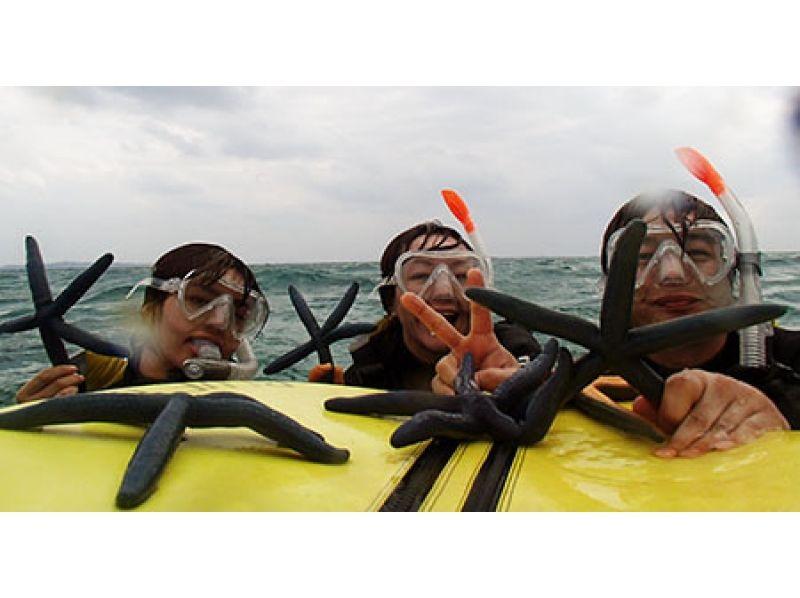 【沖縄・本部町】のんびりくつろぎBコースの紹介画像