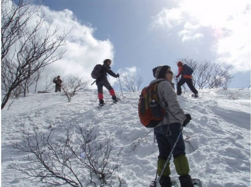 [Shiga ・ Seriyagamine] For experienced people! In the snake valley peak (Hira mountain system)Snowshoes(Welcome with stew lunch!)の紹介画像