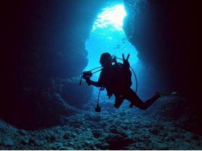 沖縄ダイビングスクール  ワールドダイビングの画像