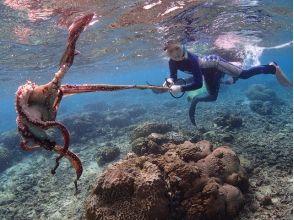 海人倶楽部の画像