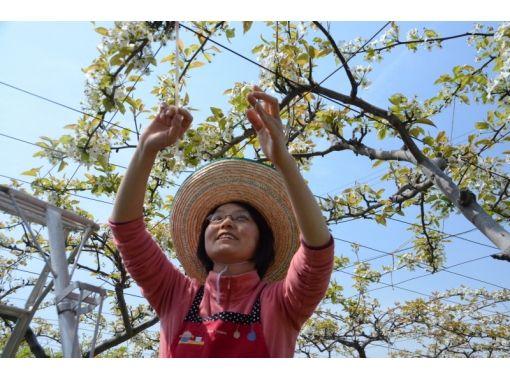 【福島・須賀川市】農縁で過ごそう♪正子ばあちゃんに学ぶ農家体験(新鮮野菜ランチ付き★)