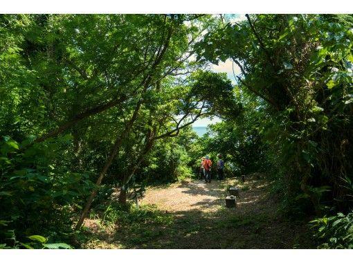 【パワースポット】ホロホローの森ツアー~蝶が舞い、鳥がさえずるマイナスイオンたっぷりの癒しの森