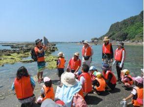 NPO法人 自然体験学校 沖縄校の画像