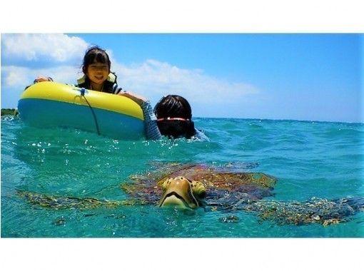 电晕措施是完美的!在东洋第一大前滨海滩附近的海龟附近浮潜的4种海洋生物(带滑水板)+ 100%浮潜!免费的照片数据!の紹介画像