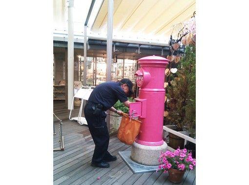 【島根・松江】「ピンクの幸運のポスト」のミニチュアで作るポストドームの紹介画像