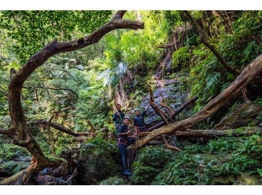 [Okinawa Yanbar] Unexplored Yanbaru shower Climbing & Canyoning ★ Zip Slide & Natural Water Slider (with Photo and movie Shooting Service)の紹介画像
