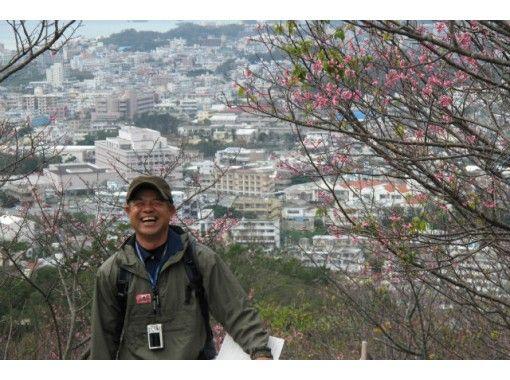 【沖縄・名護】観光ガイドツアー「城歩きコース」名護城(ナングスク)と自然を体感できる!2名様より予約可!