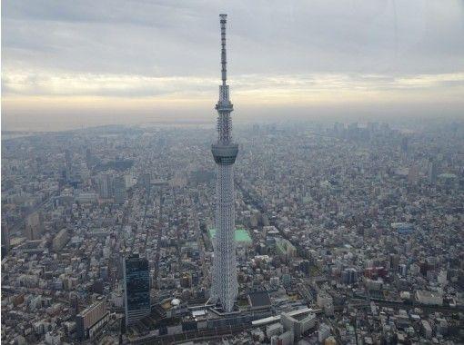 【東京・新木場】空からの大パノラマを! ヘリコプター東京ツアー(飛行時間:15分)