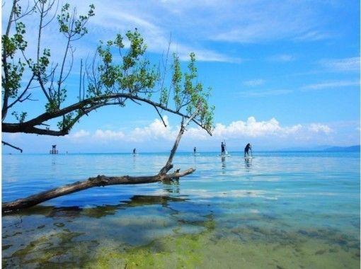 【琵琶湖·SUP体验】琵琶湖, 湖西 SUP,Shirahise Shrine崇拜计划(2小时)の紹介画像