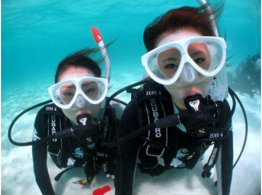 【沖縄・石垣】お手軽!竹富島近海で潜る体験ダイビング(半日コース)