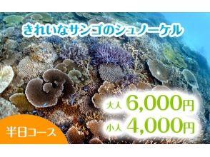 マリンサービス アポロン 石垣島の画像