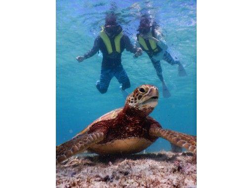 令人印象深刻的经验!在东方最美丽的海滩上浮潜,您可以与100%的野生海龟和3种尖叫尖叫的海上运动一起游泳の紹介画像