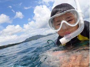 ビーブルー石垣島ダイビングサービスの画像