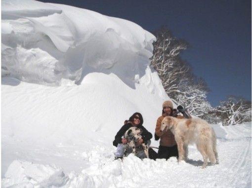 【栃木・那須高原】那須連山を一望スノーシュー体験!経験者~初心者向け「マウントジーンズ那須山頂」