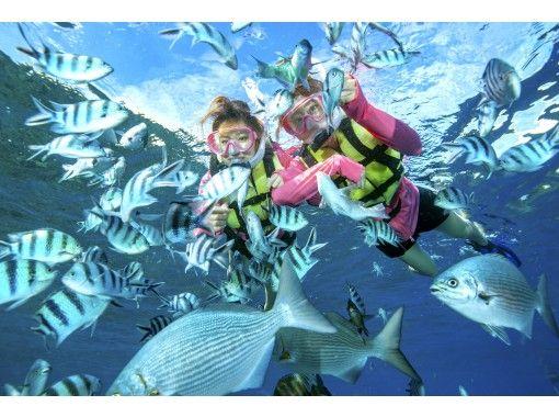 \流行套裝/藍洞浮潛+香蕉船乘船去!讓我們盡情享受兩次♡の紹介画像