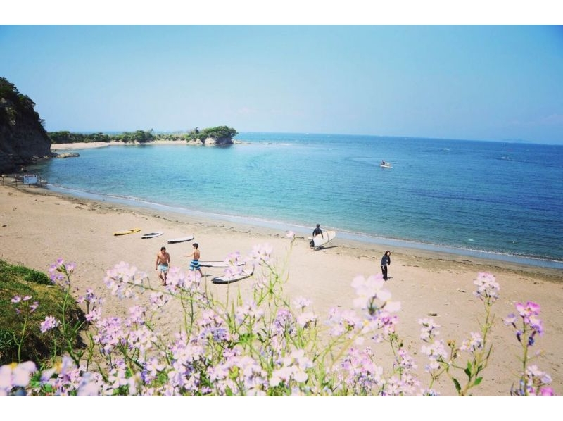 【Kanagawa · Hayama】 A beautiful ocean full of private feeling! Experience Introduction image of SUP class / 1 with drink (1 hour)