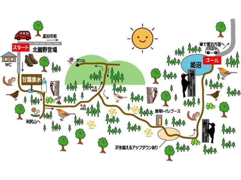 【北海道・利尻島】利尻自然ガイドサービス・利尻島「ポン山~姫沼」トレッキングプランの紹介画像