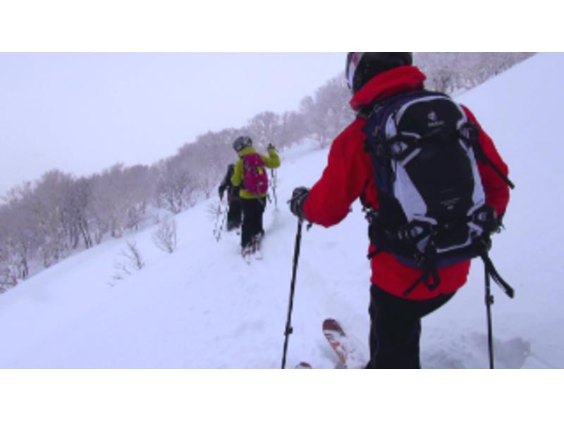 【北海道・ニセコ】アンヌプリ山頂からの滑走!バックカントリーガイド【リピーター限定プラン】の紹介画像