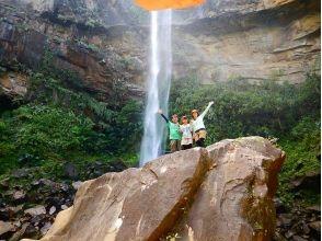 西表ジャングル探検隊の画像