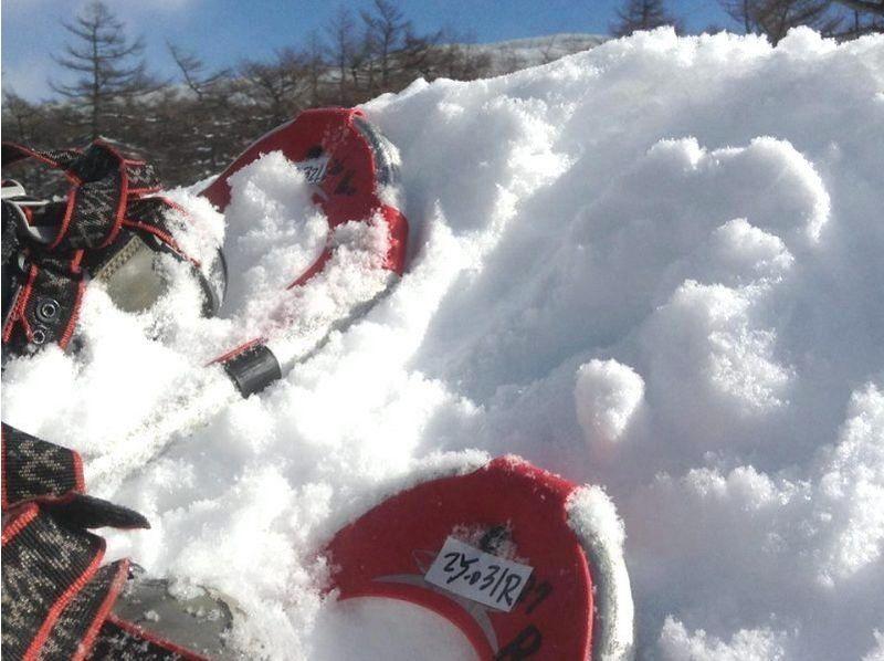 【長野・高峰高原】初級者向け絶景スノーシュー(高峰山コース)の紹介画像