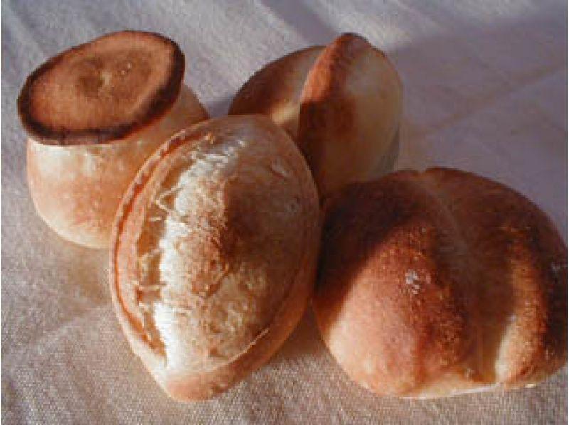 【東京・世田谷区】笹塚駅から徒歩4分!2種類パン作り教室(フランスパン&天然酵母パン)の紹介画像